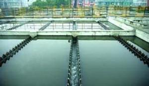 鱼塘水质监测哪些项目